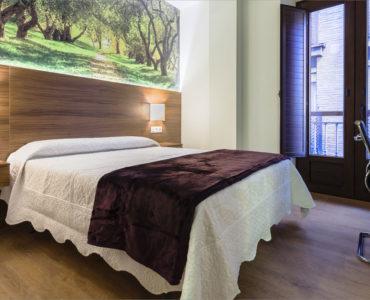 Habitación individual - Hotel Residencia Arriola