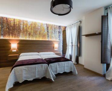 Habitación doble (cama matrimonial)